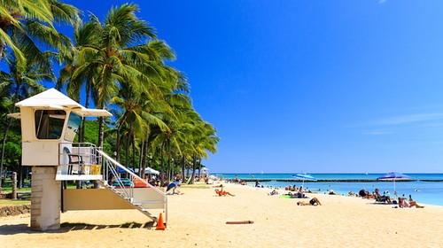 ハワイのお土産人気ランキング